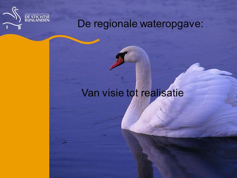 De regionale wateropgave: Van visie tot realisatie