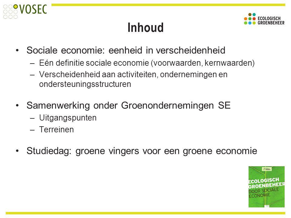 Inhoud Sociale economie: eenheid in verscheidenheid –Eén definitie sociale economie (voorwaarden, kernwaarden) –Verscheidenheid aan activiteiten, onde