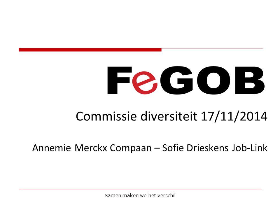 Commissie diversiteit 17/11/2014 Annemie Merckx Compaan – Sofie Drieskens Job-Link Samen maken we het verschil