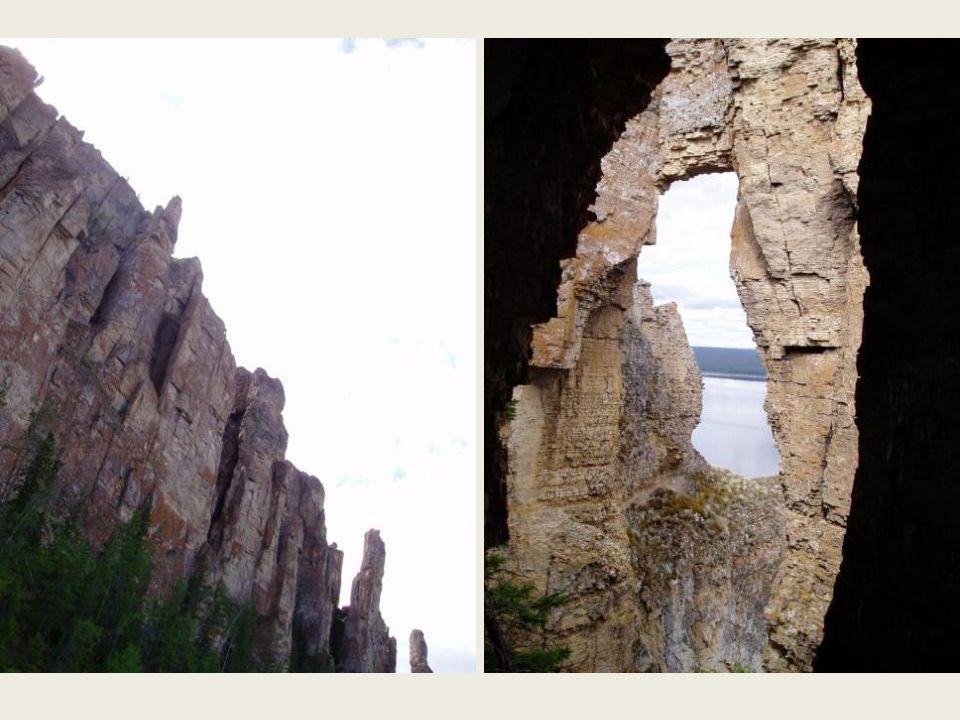 Deze rotsformaties bereiken 'n hoogte tot 150 meter, en beslaan 'n lengte van 130 km langs de Lena-rivier.