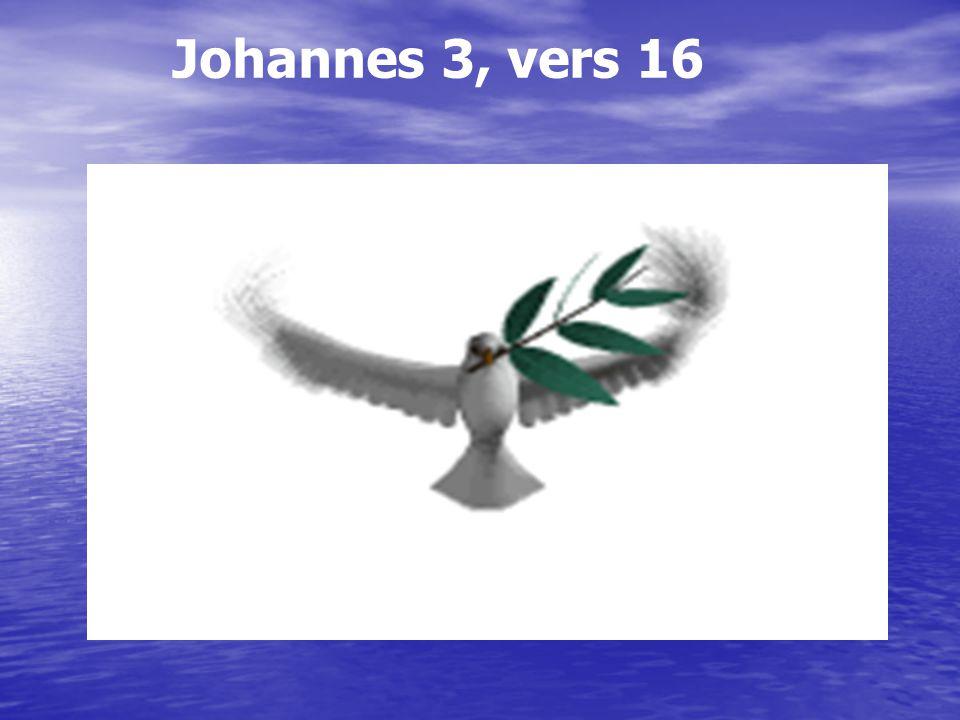Johannes 3, vers 16