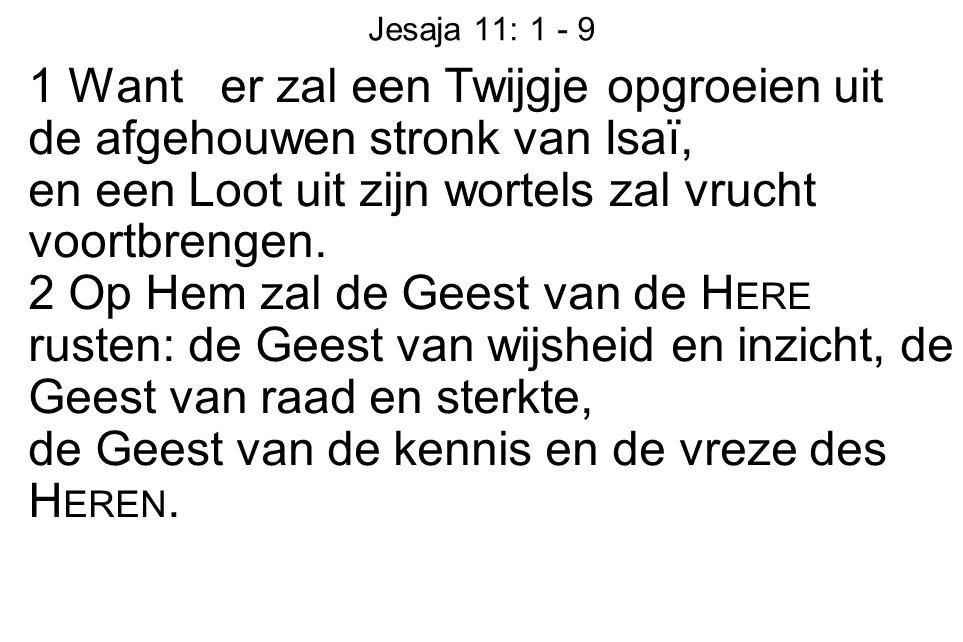 Jesaja 11: 1 - 9 1 Want er zal een Twijgje opgroeien uit de afgehouwen stronk van Isaï, en een Loot uit zijn wortels zal vrucht voortbrengen. 2 Op Hem
