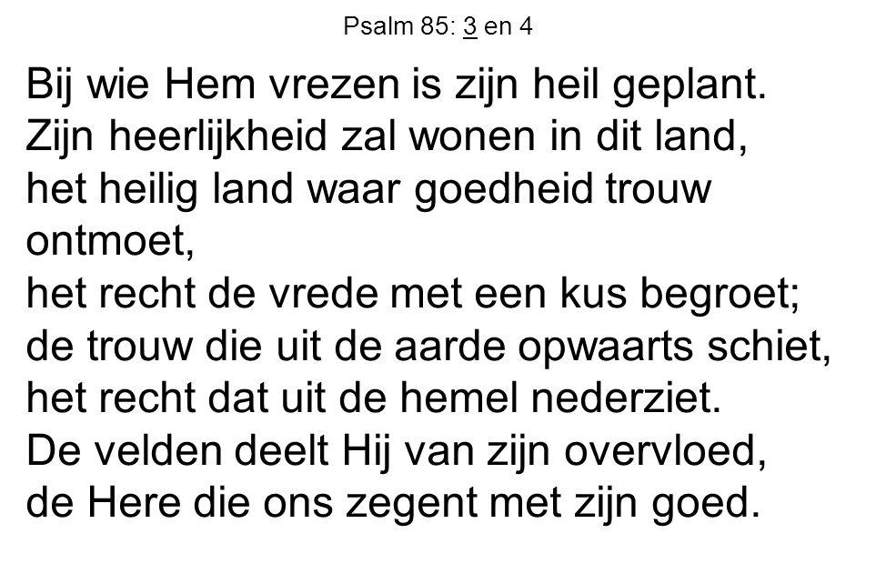 Psalm 85: 3 en 4 Bij wie Hem vrezen is zijn heil geplant. Zijn heerlijkheid zal wonen in dit land, het heilig land waar goedheid trouw ontmoet, het re