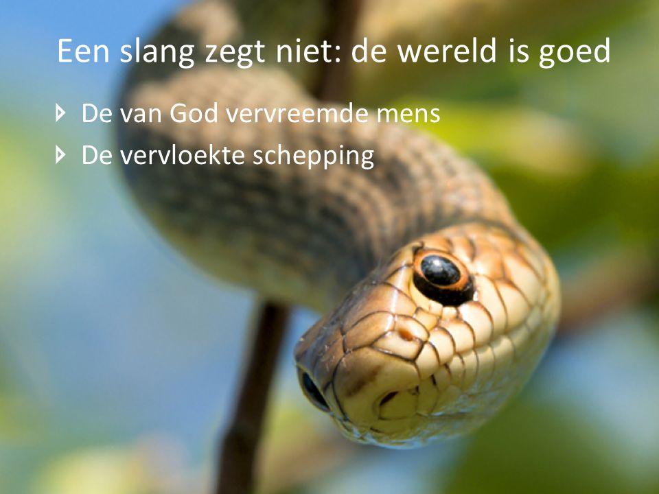 De van God vervreemde mens De vervloekte schepping Een slang zegt niet: de wereld is goed