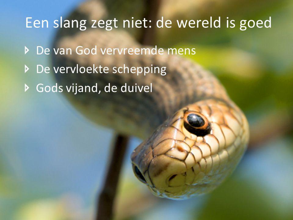 De van God vervreemde mens De vervloekte schepping Gods vijand, de duivel Een slang zegt niet: de wereld is goed