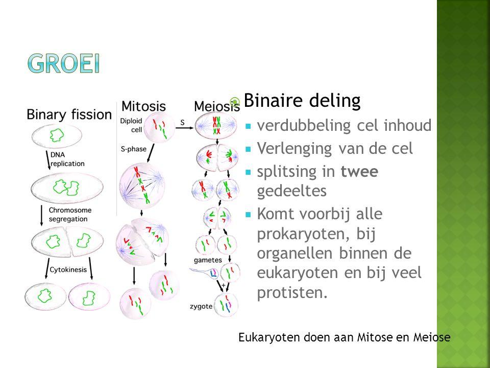  verdubbeling cel inhoud  Verlenging van de cel  splitsing in twee gedeeltes  Komt voorbij alle prokaryoten, bij organellen binnen de eukaryoten en bij veel protisten.