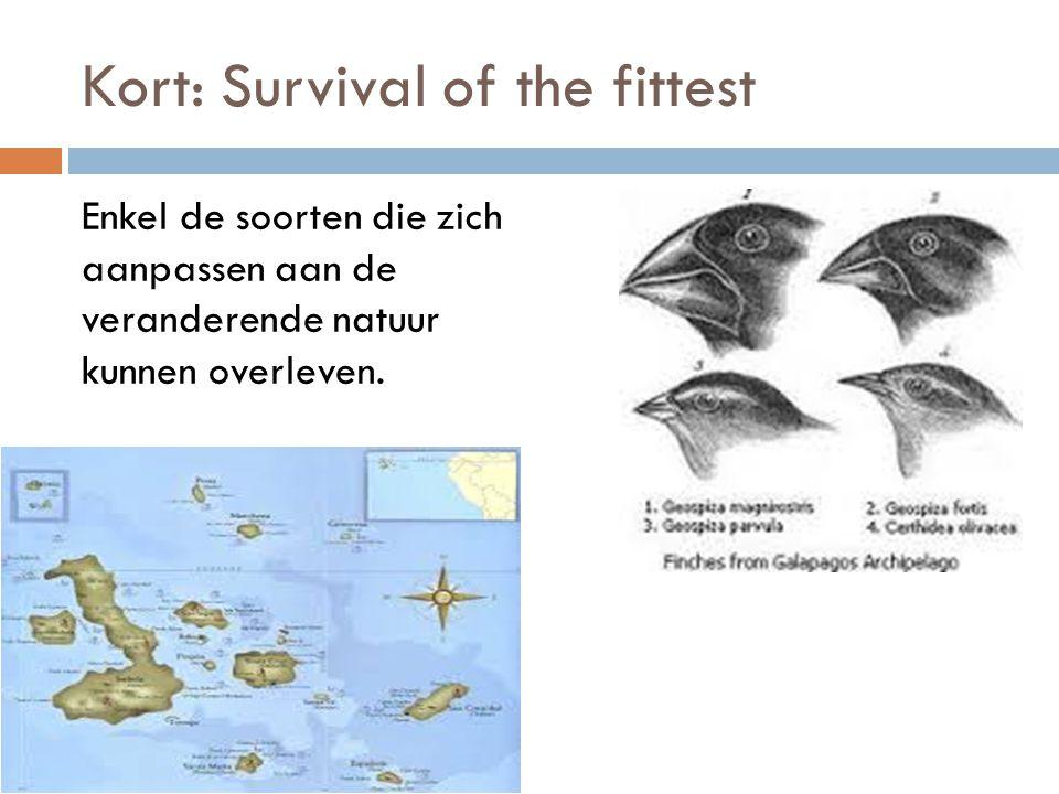 Kort: Survival of the fittest Enkel de soorten die zich aanpassen aan de veranderende natuur kunnen overleven.