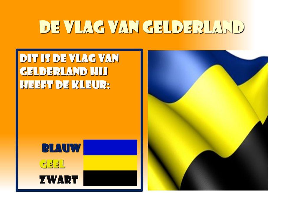 De vlag van Gelderland DIT IS DE VLAG VAN GELDERLAND HIJ HEEFT DE KLEUR: Blauw Blauw geel geel zwart zwart