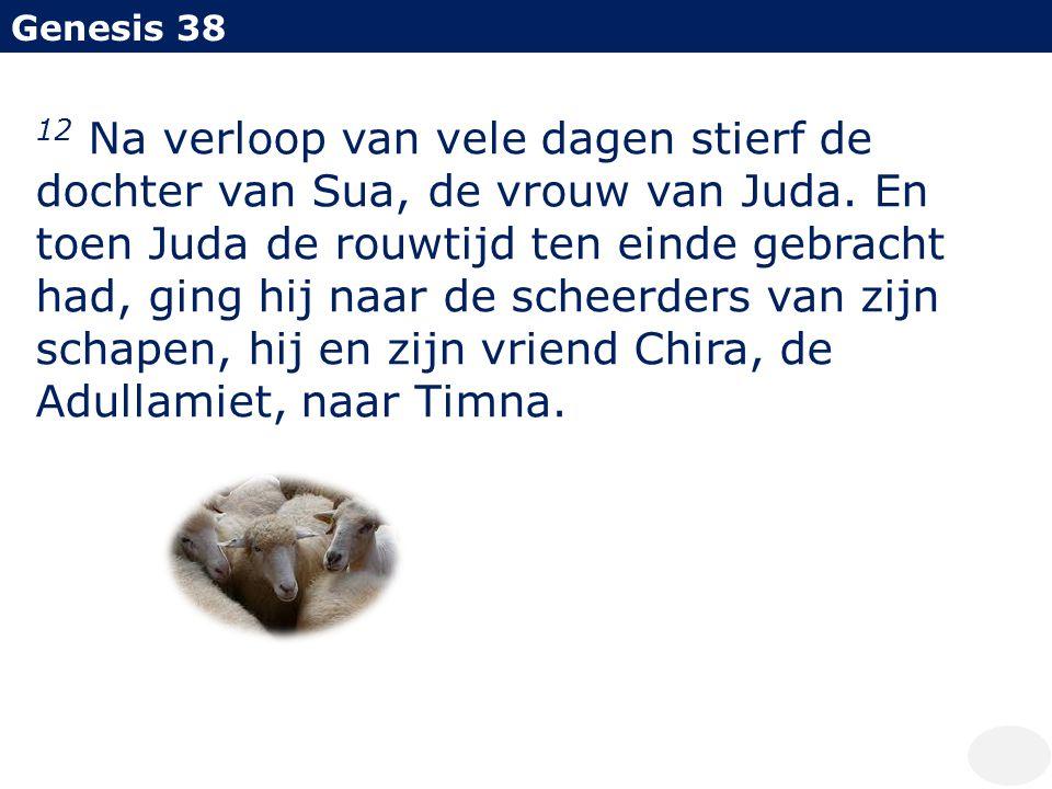 Genesis 38 12 Na verloop van vele dagen stierf de dochter van Sua, de vrouw van Juda. En toen Juda de rouwtijd ten einde gebracht had, ging hij naar d