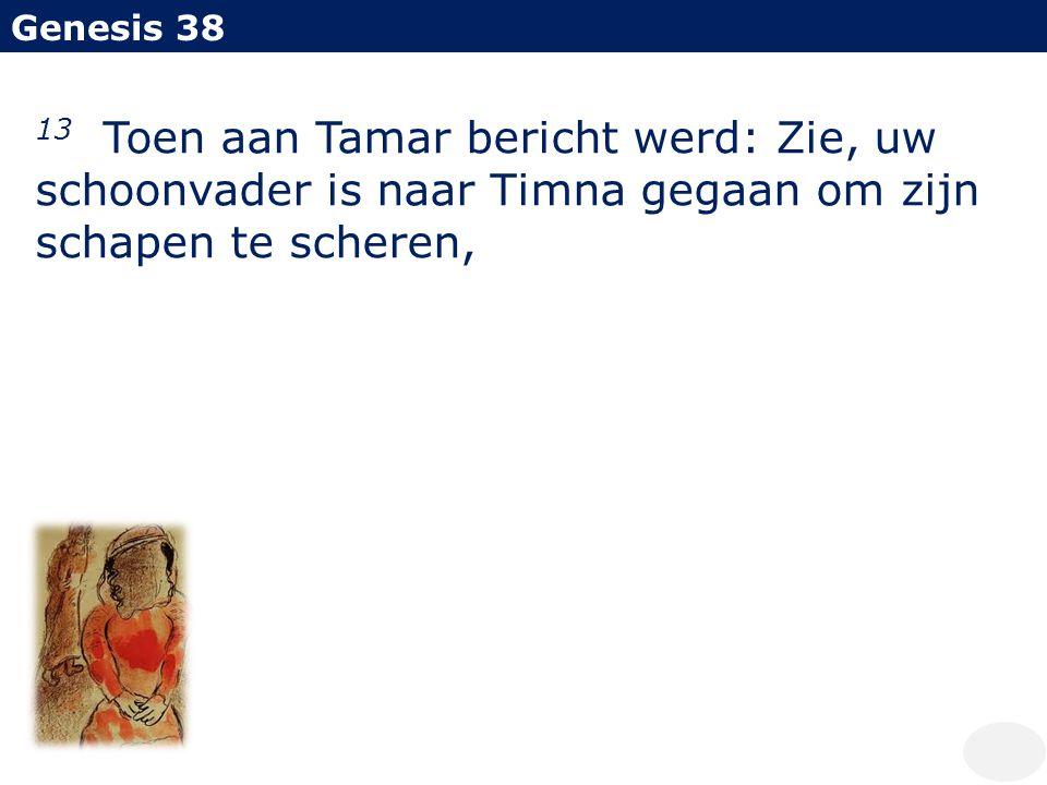 Genesis 38 13 Toen aan Tamar bericht werd: Zie, uw schoonvader is naar Timna gegaan om zijn schapen te scheren,