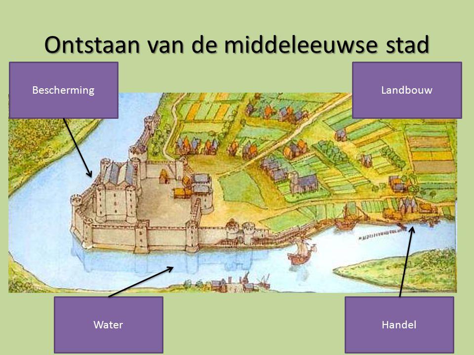 Ontstaan van de middeleeuwse stad Bescherming Water Landbouw Handel