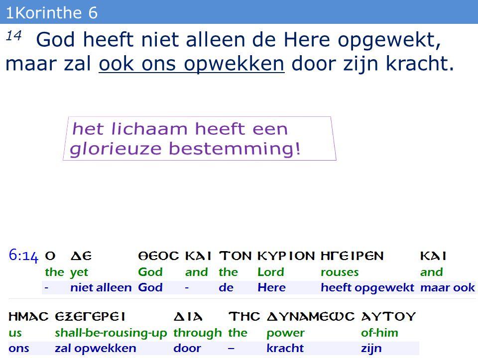 1Korinthe 6 14 God heeft niet alleen de Here opgewekt, maar zal ook ons opwekken door zijn kracht.