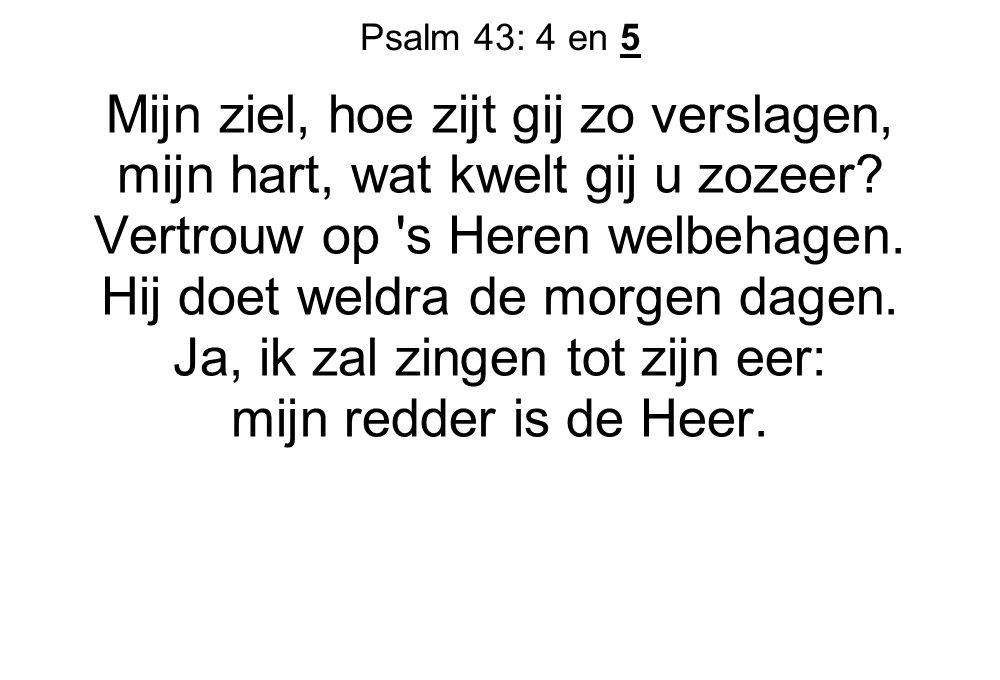 Psalm 43: 4 en 5 Mijn ziel, hoe zijt gij zo verslagen, mijn hart, wat kwelt gij u zozeer? Vertrouw op 's Heren welbehagen. Hij doet weldra de morgen d