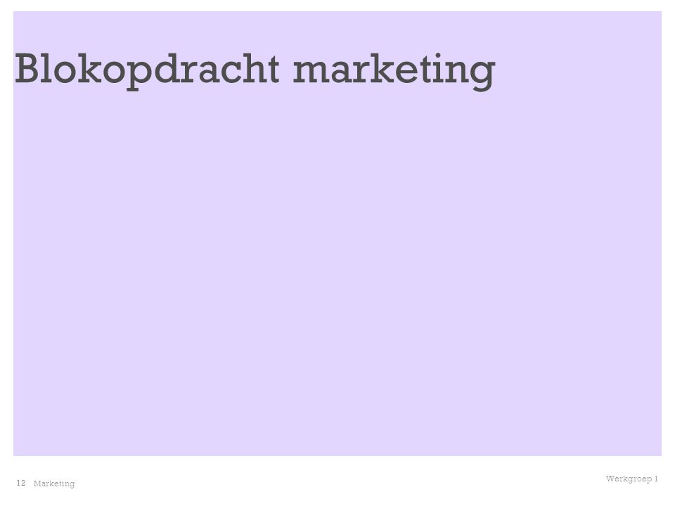 12 Marketing Werkgroep 1 Blokopdracht marketing