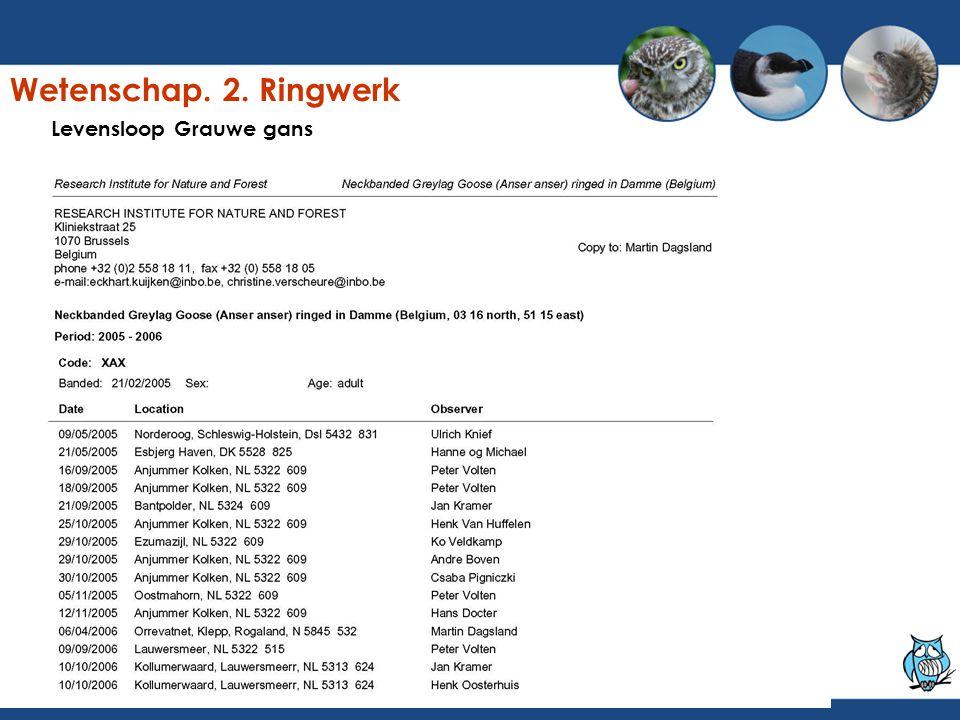 Levensloop Grauwe gans Wetenschap. 2. Ringwerk