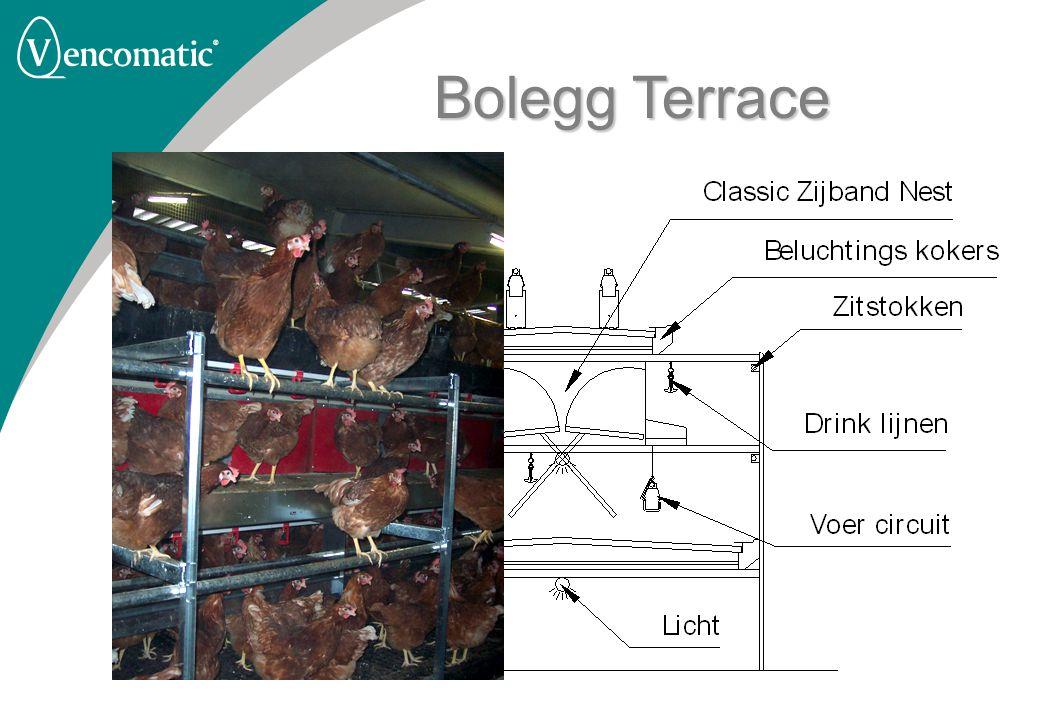 Bolegg Terrace