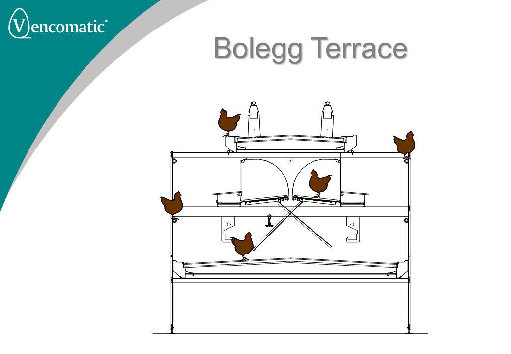 Afmetingen Bolegg Terrace