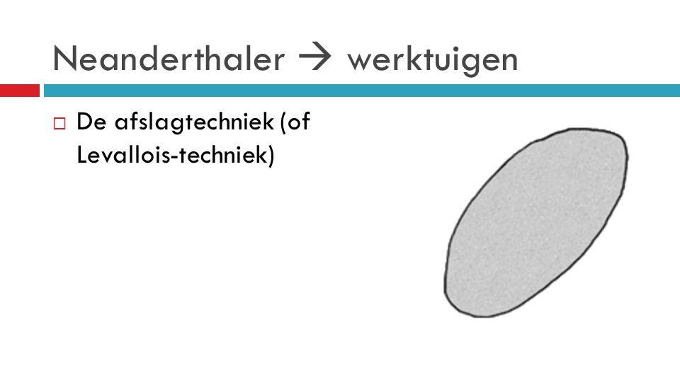 Neanderthaler  werktuigen  De afslagtechniek (of Levallois-techniek)