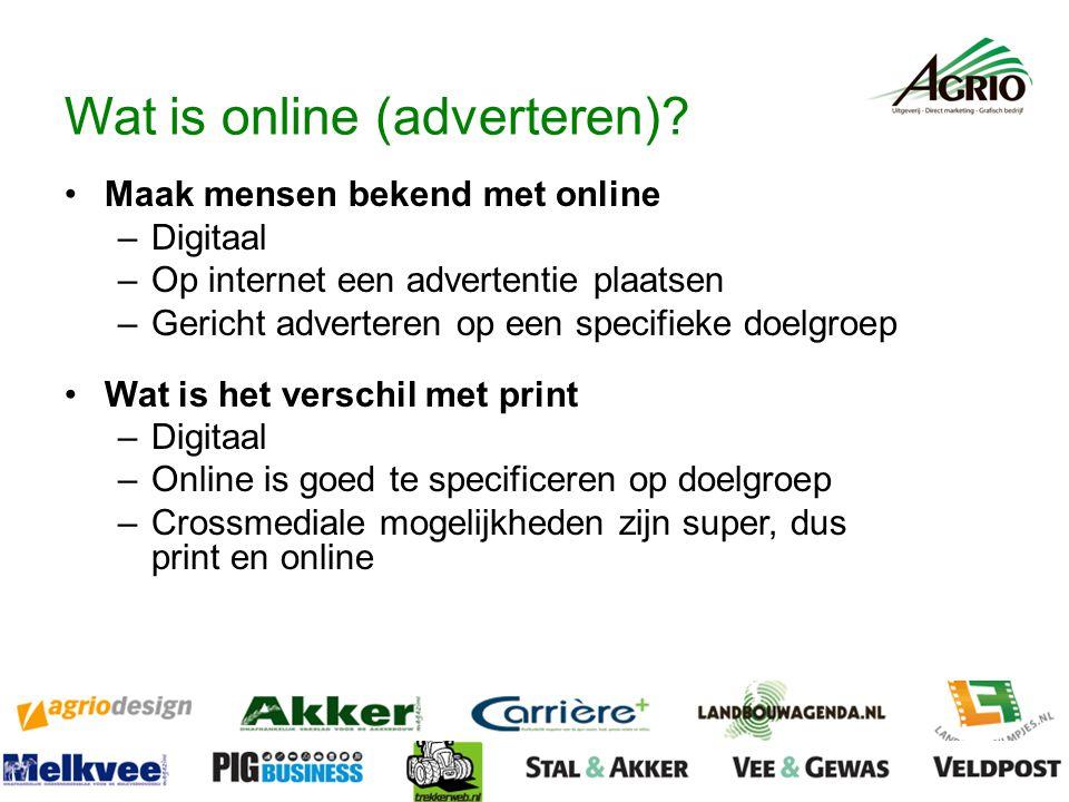 Wat is online (adverteren).