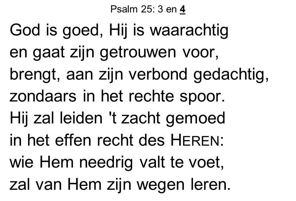 Psalm 25: 3 en 4 God is goed, Hij is waarachtig en gaat zijn getrouwen voor, brengt, aan zijn verbond gedachtig, zondaars in het rechte spoor. Hij zal