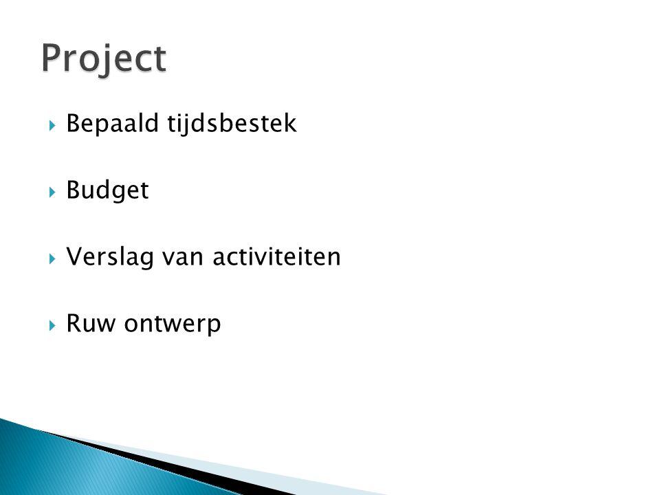  Bepaald tijdsbestek  Budget  Verslag van activiteiten  Ruw ontwerp