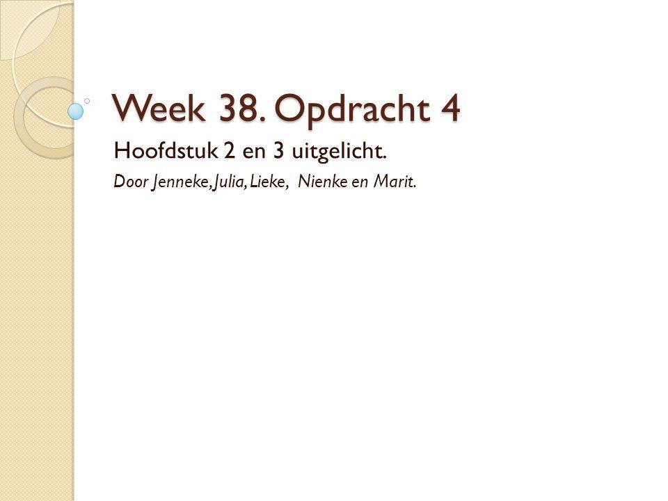 Week 38. Opdracht 4 Hoofdstuk 2 en 3 uitgelicht. Door Jenneke, Julia, Lieke, Nienke en Marit.