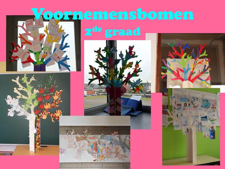 Voornemensbomen 2 de graad