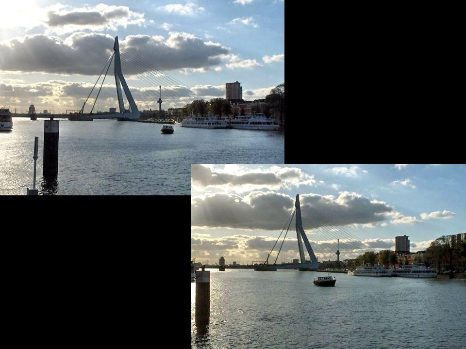 Vanaf de Stieltjesstraat-kade zie ik de Zwaan, Euromast, en Noordereiland.