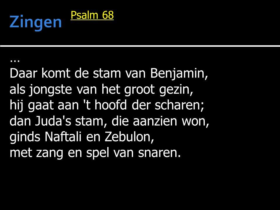 … Daar komt de stam van Benjamin, als jongste van het groot gezin, hij gaat aan 't hoofd der scharen; dan Juda's stam, die aanzien won, ginds Naftali
