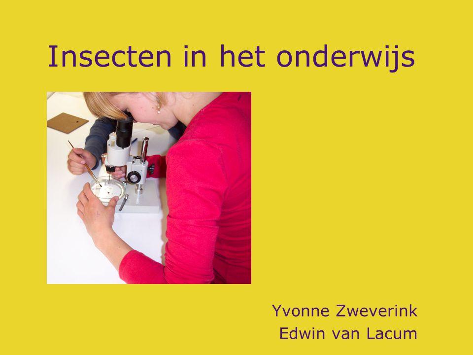 Insecten in het onderwijs Yvonne Zweverink Edwin van Lacum