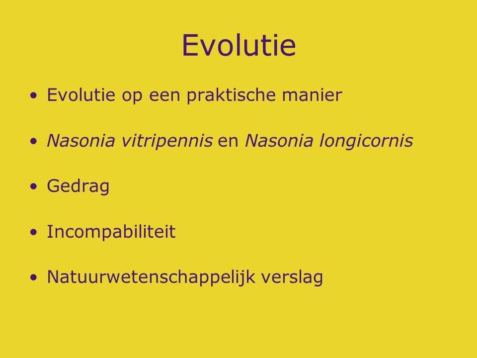 Evolutie Evolutie op een praktische manier Nasonia vitripennis en Nasonia longicornis Gedrag Incompabiliteit Natuurwetenschappelijk verslag