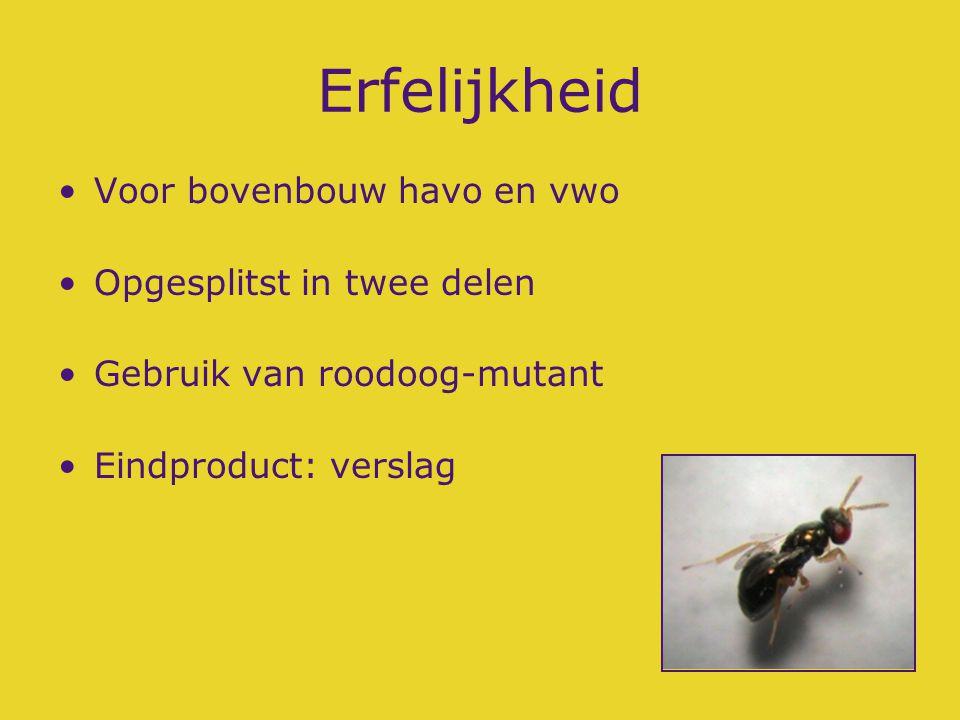 Erfelijkheid I Sorteren van wespen in popstadium Laten paren van wildtype met mutant Nakomelingen bekijken Natuurwetenschappelijk verslag