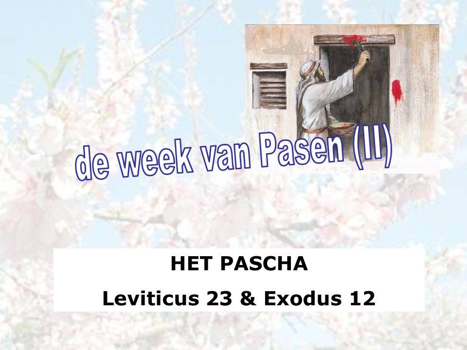 HET PASCHA Leviticus 23 & Exodus 12