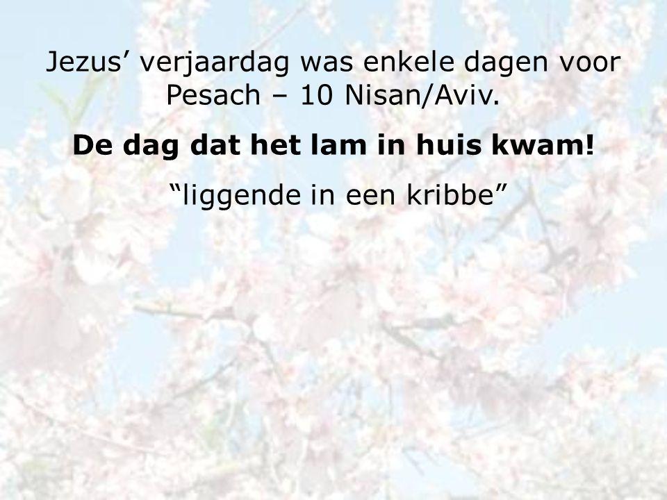 Jezus' verjaardag was enkele dagen voor Pesach – 10 Nisan/Aviv.
