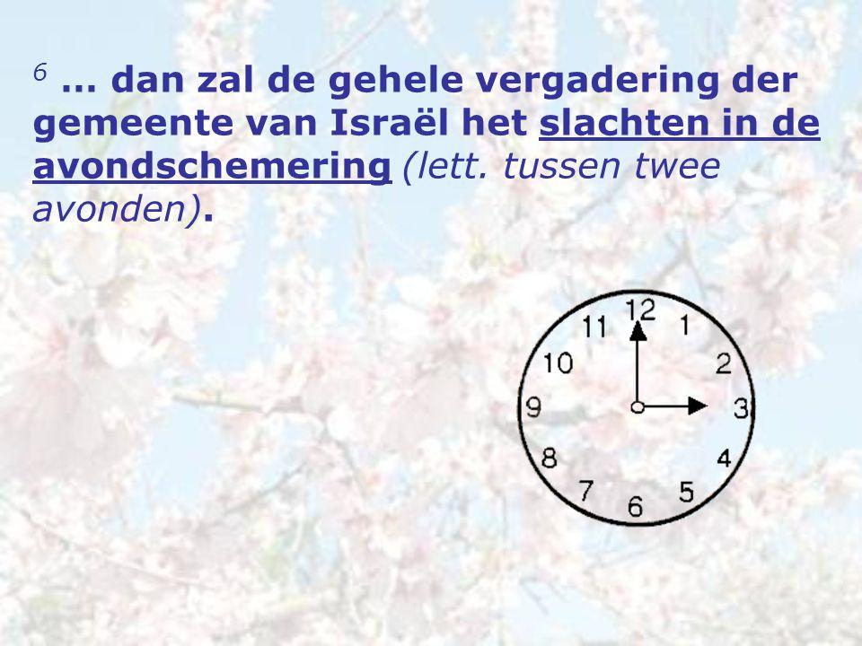 6 … dan zal de gehele vergadering der gemeente van Israël het slachten in de avondschemering (lett.