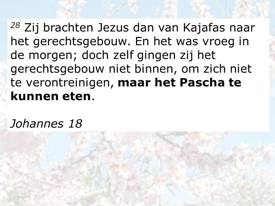 28 Zij brachten Jezus dan van Kajafas naar het gerechtsgebouw.