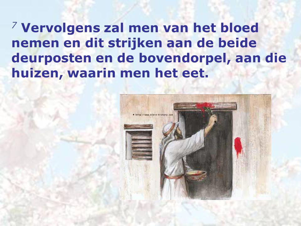 7 Vervolgens zal men van het bloed nemen en dit strijken aan de beide deurposten en de bovendorpel, aan die huizen, waarin men het eet.