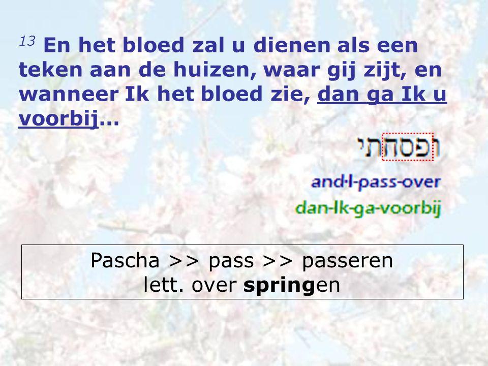 13 En het bloed zal u dienen als een teken aan de huizen, waar gij zijt, en wanneer Ik het bloed zie, dan ga Ik u voorbij… Pascha >> pass >> passeren lett.