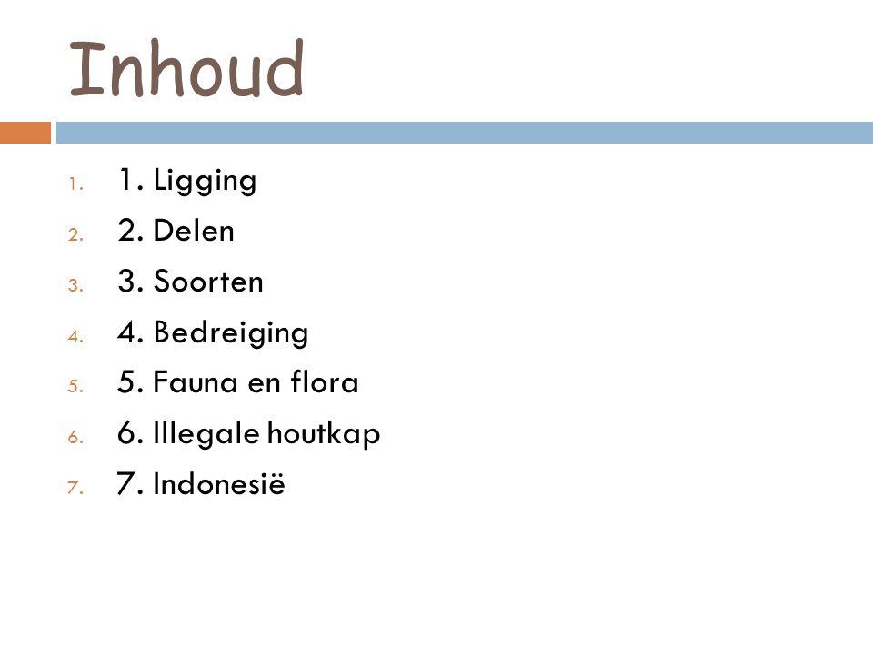 Inhoud 1. 1. Ligging 2. 2. Delen 3. 3. Soorten 4. 4. Bedreiging 5. 5. Fauna en flora 6. 6. Illegale houtkap 7. 7. Indonesië