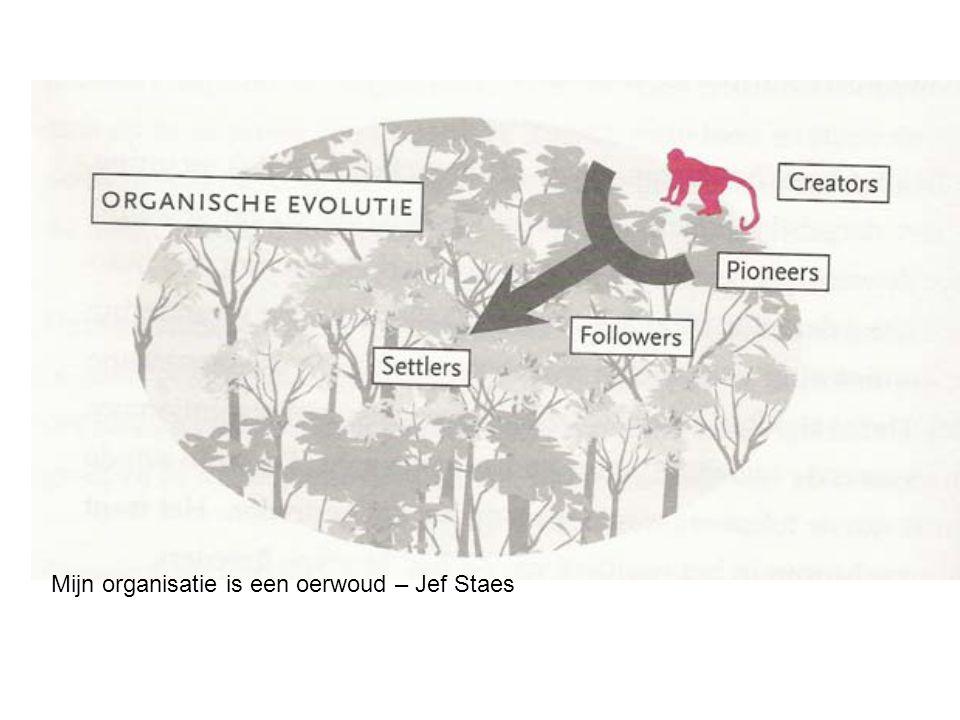 Mijn organisatie is een oerwoud – Jef Staes