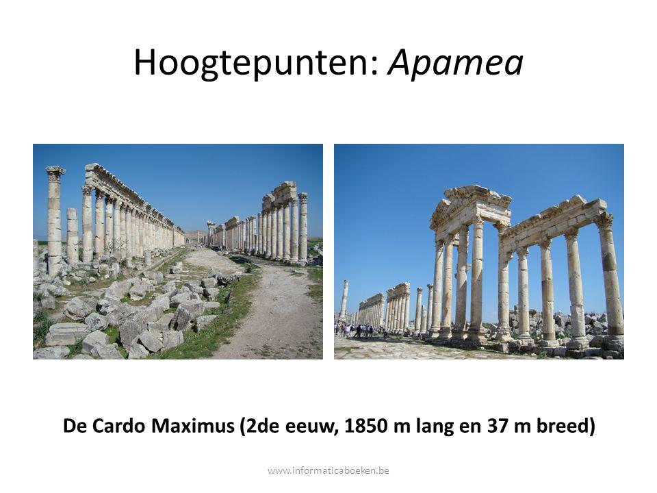 Hoogtepunten: Apamea De Cardo Maximus (2de eeuw, 1850 m lang en 37 m breed) www.informaticaboeken.be