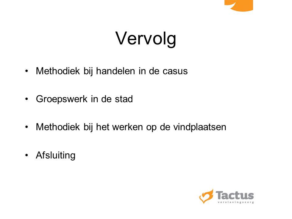 Vervolg Methodiek bij handelen in de casus Groepswerk in de stad Methodiek bij het werken op de vindplaatsen Afsluiting