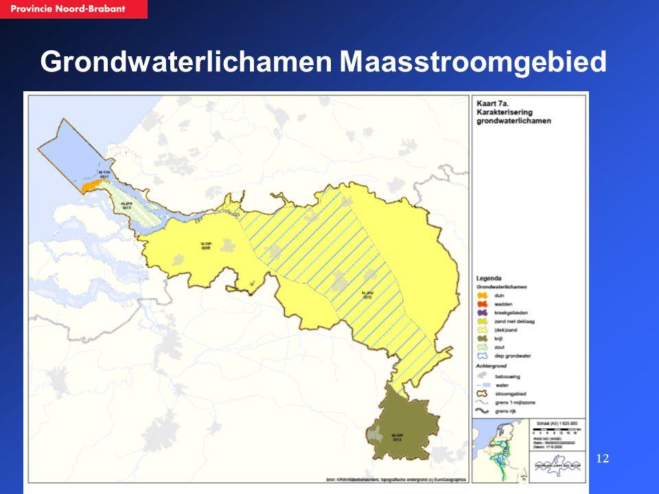 12 Grondwaterlichamen Maasstroomgebied