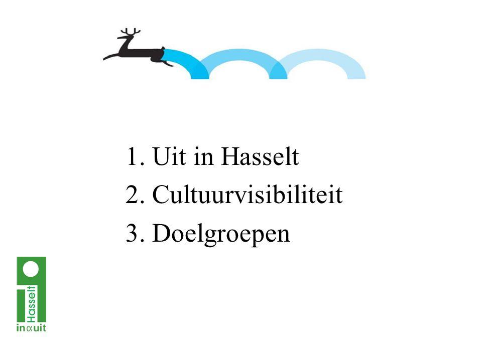 1. Uit in Hasselt 2. Cultuurvisibiliteit 3. Doelgroepen