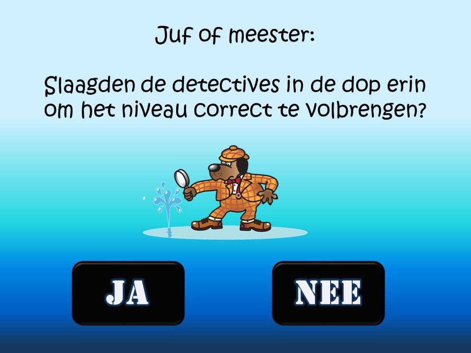 Juf of meester: Slaagden de detectives in de dop erin om het niveau correct te volbrengen?