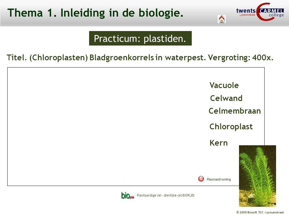 © 2009 Biosoft TCC - Lyceumstraat Practicum: plastiden. Chloroplast Thema 1. Inleiding in de biologie. Titel. (Chloroplasten) Bladgroenkorrels in wate