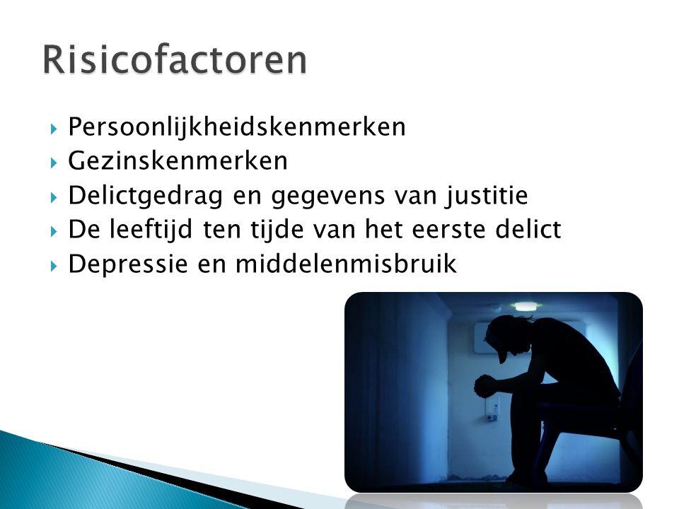  Persoonlijkheidskenmerken  Gezinskenmerken  Delictgedrag en gegevens van justitie  De leeftijd ten tijde van het eerste delict  Depressie en mid