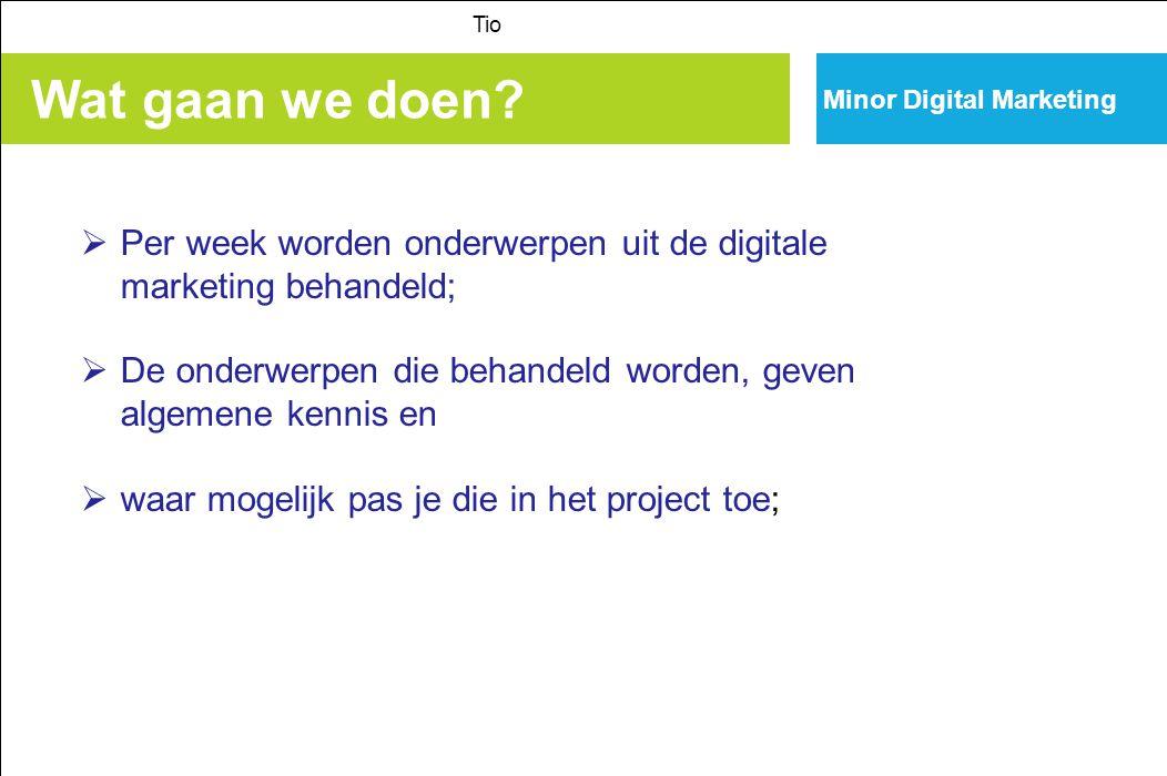 Minor Digital Marketing Wat gaan we doen? Tio  Per week worden onderwerpen uit de digitale marketing behandeld;  De onderwerpen die behandeld worden