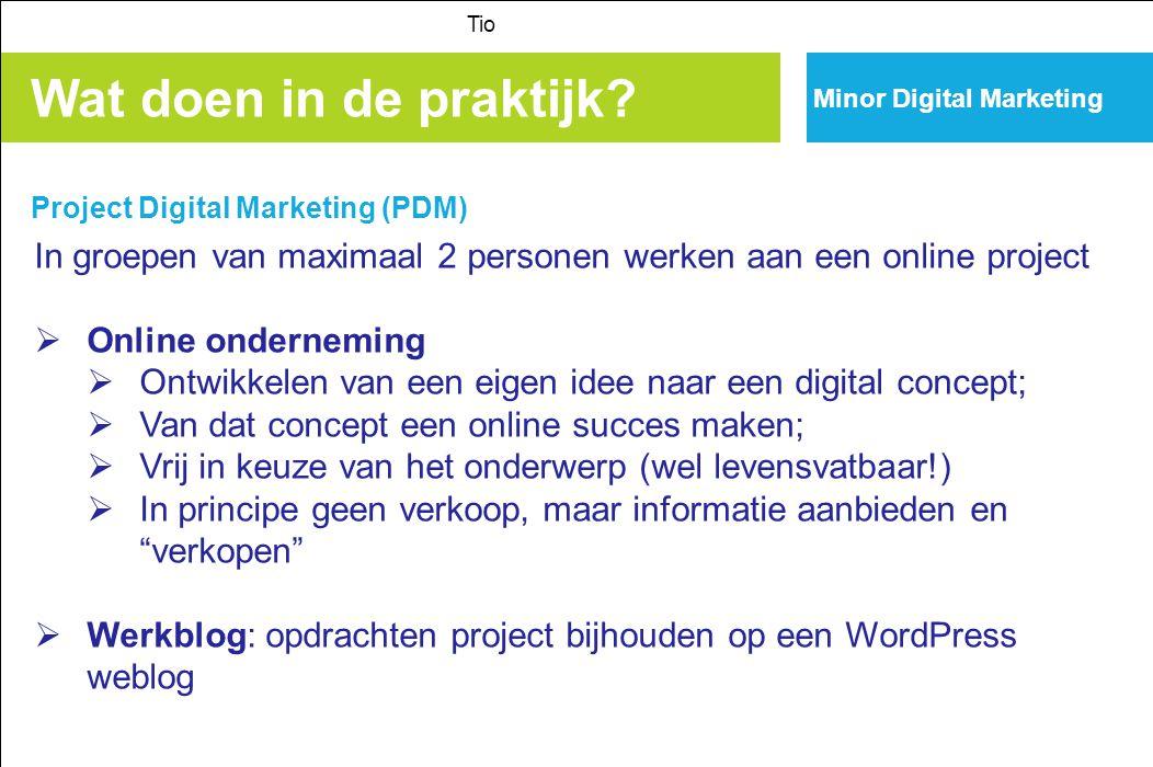 Minor Digital Marketing Wat doen in de praktijk? Project Digital Marketing (PDM) Tio In groepen van maximaal 2 personen werken aan een online project