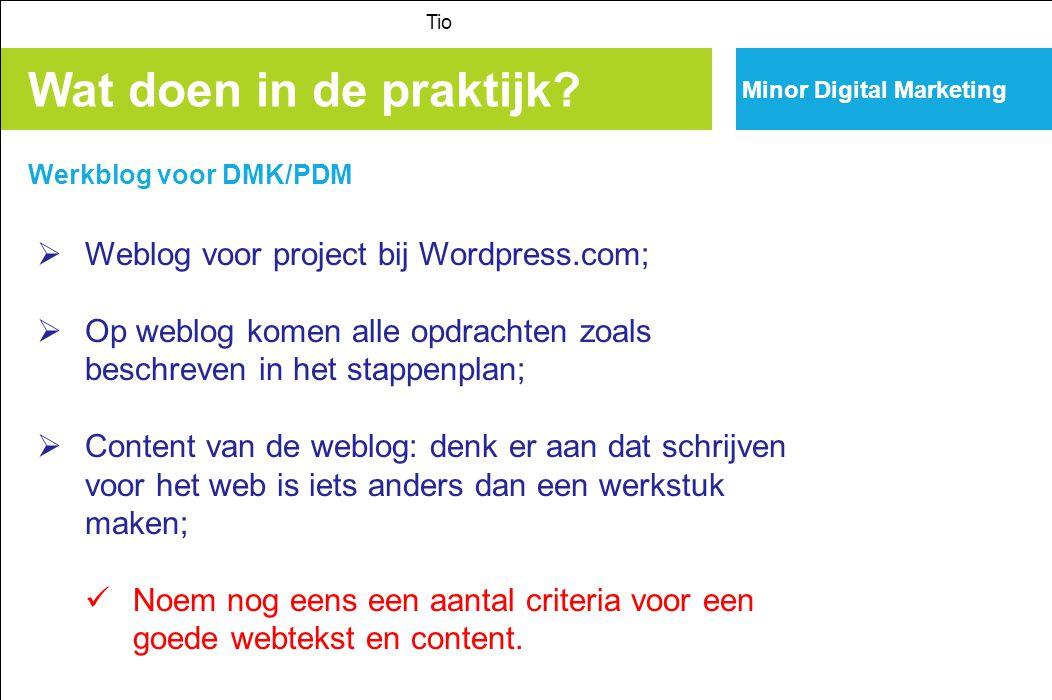 Minor Digital Marketing Wat doen in de praktijk? Tio  Weblog voor project bij Wordpress.com;  Op weblog komen alle opdrachten zoals beschreven in he